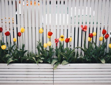 Мрежите за огради – чудесен избор за вашият двор