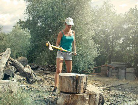 Почистване на дворове и контрол над вредителите